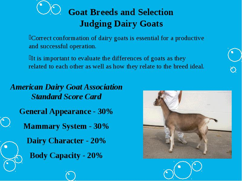 Major Breeds of Goats (Dairy, Meat and Mohair) Parts of a