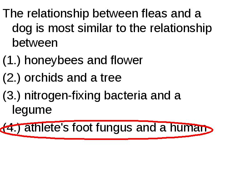 the relationship between athletes foot fungus and humans is